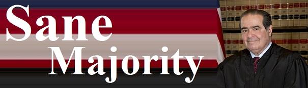 Sane Majority Link