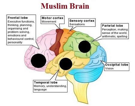 muslimbrain