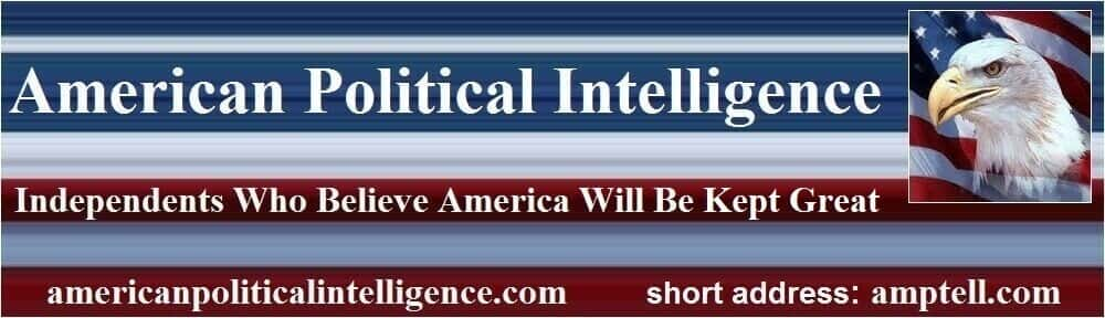 American Political Intelligence